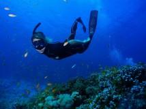 Freediving: Objevení další dimenze léta