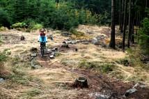 První dojmy z podzimních Trutnov Trails