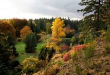 Běhání v Průhonickém parku