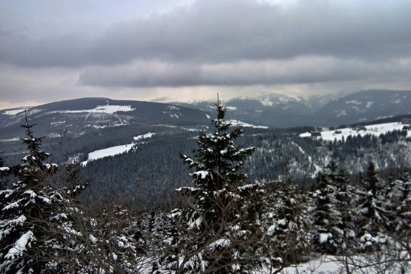 22km trasa přes Černou horu na Lesní a zpět: v zimě na běžky, v létě na hike či MTB