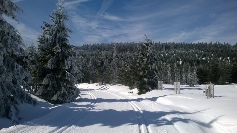 35km běžkařská trasa aneb v Bedřichově sezóna ještě neskončila