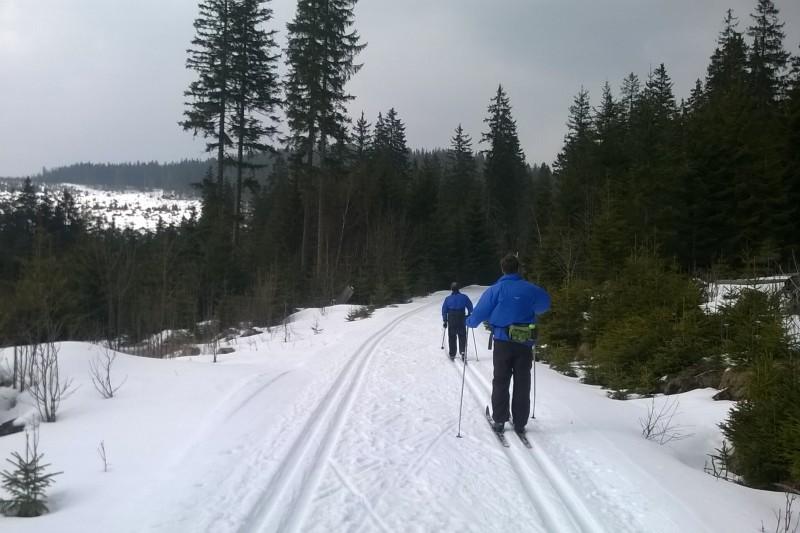 23km běžkařská trasa: i na Šumavě se dá ještě jezdit