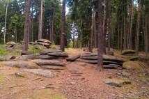 16km běžecká trasa: Dokonalý trail poblíž Petrohradu