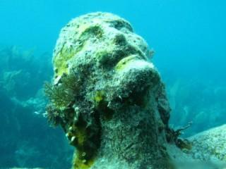 Potápění na Florida Keys