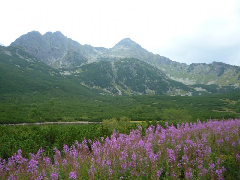 Túra k Zelenému a Skalnatému plesu v Tatrách