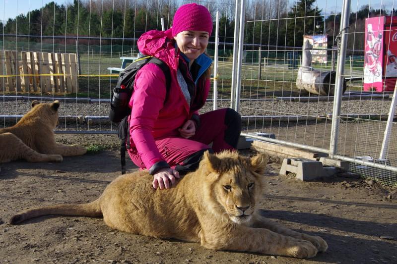 Kontaktní Zoo v Liptově aneb pohlaďte si lva