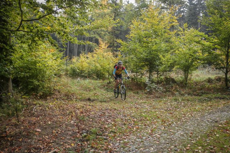 53km MTB trasa: Nahoru a dolů po Železných horách