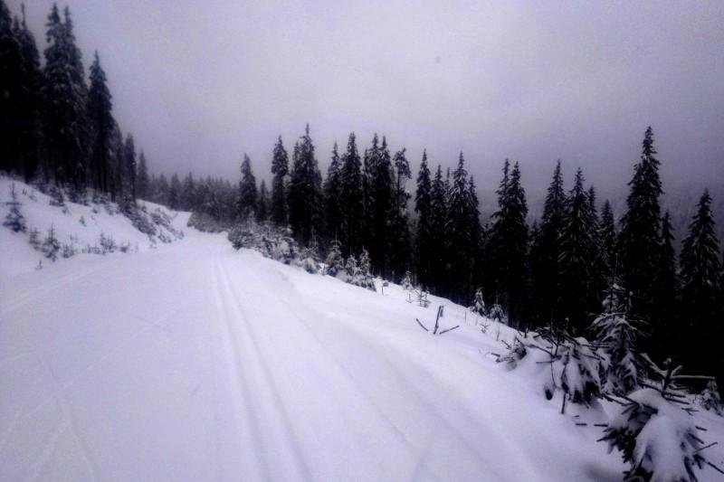 15km rozcvička na běžkách na Černé hoře