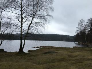 Velký Pařezitý rybník u Telče