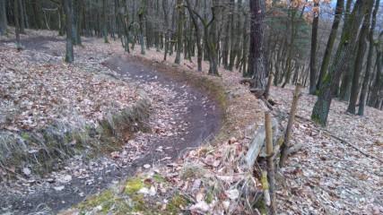 Dvě desítky let Downhillu na Berounsku