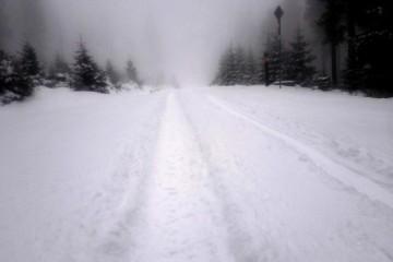 Takovýto jarní 12km proběhnutí na Černou horu