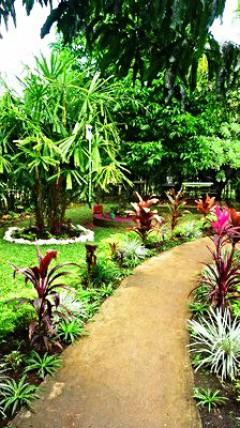 Tonga - část první