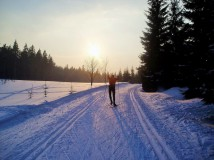 Jak na běžky, když je málo sněhu