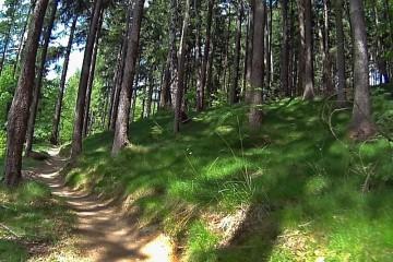 34km MTB trasa: pro pstruhy přes čtyři vrchy