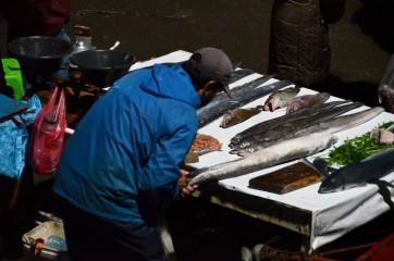 MAROKO část 5. - O rybách a lidech