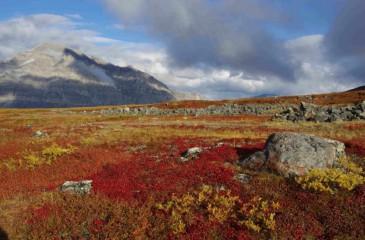 Devět dní trekování v Brooks Range