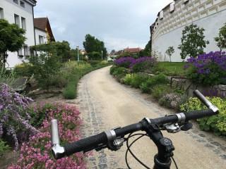 Okolo Třeboně – okruh 2 (50 km)