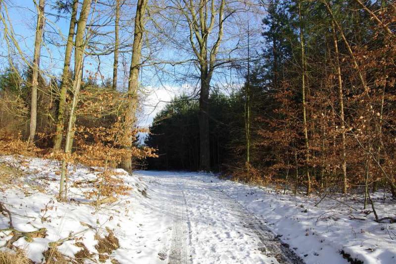 15km běžecká a MTB trasa: Ladovým krajem východně od Valnovky
