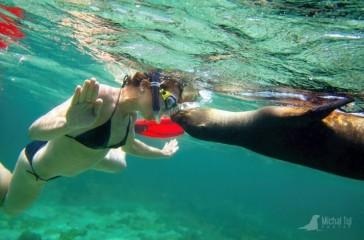 Plavba snů v galapážském ráji