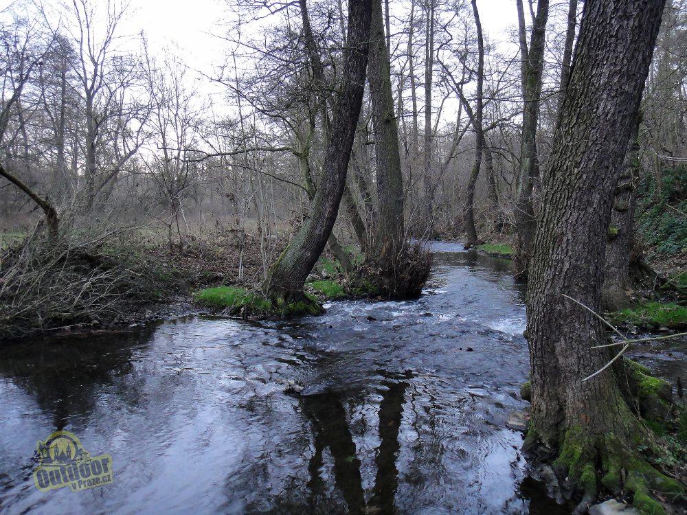 Rio Botičo