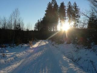 20km běžkařská trasa okolo Padrťských rybníků