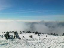 Když ten sníh miluješ, není co řešit (běhání na sněhu, Krkonoše)