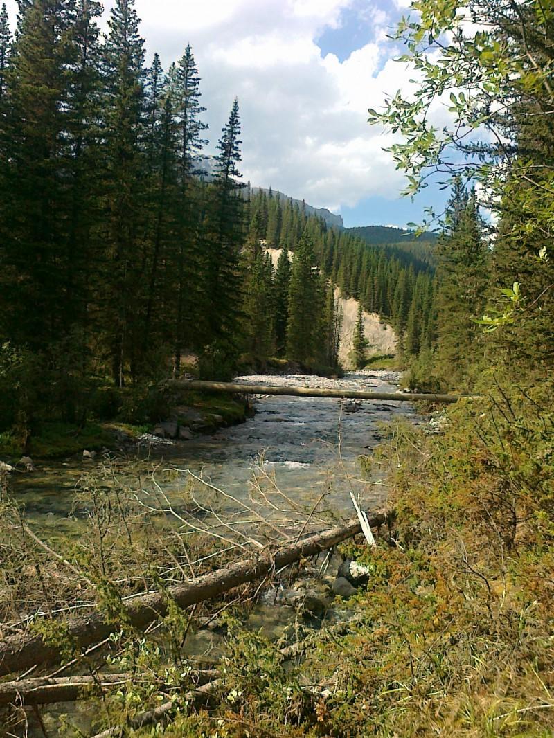 40 Miles Creek
