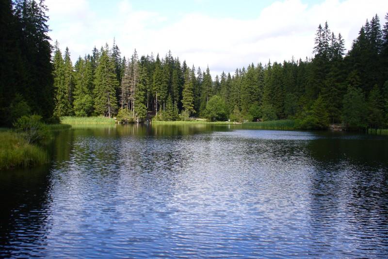 Vrbické jezero