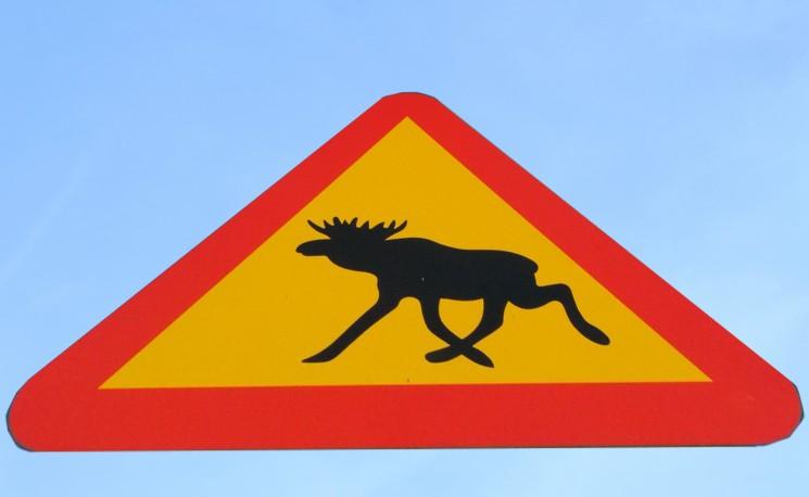 Tato značka je ve Skandinávii běžná, ale na trati nebyla