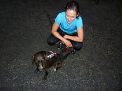 Běhat se dá se psy všech velikostí.