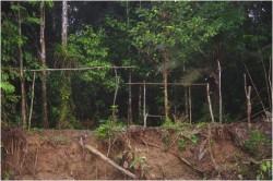 Pozůstatky tábořiště divochů kmene Tagaeri a Taromenane