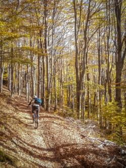 Trail Okolo Měděnce
