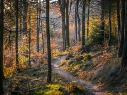 Trail Libverdská strana