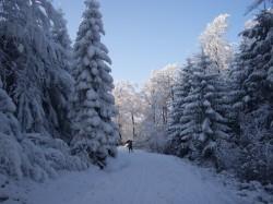 Jizerky v zimě