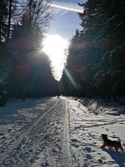 S nadmořkou výškou přibývá sněhu (cesta z Orlova k hájovně)