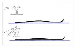 Jak pracuje lyže pod vámi (Fritsch a Willmann, 2005)