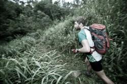 V brazilské džungli