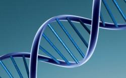 Není ta naše DNA krásná?