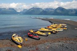 Čekání na odliv, Resurrection Bay, Aljaška